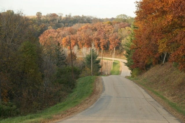 Fall_colors_on_Pine_Road_-_Debby_Manke