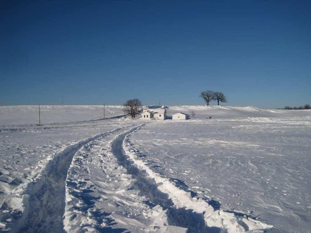Winter_landscape_-_Colleen_Cunningham